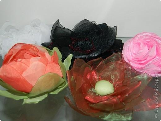Цветочки!!!  ( работа Кристины) фото 1