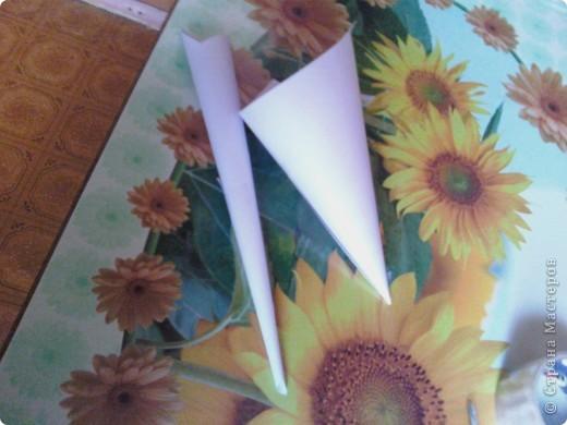 Во первых самое главное-это инструменты, в моём случае-это кулёчки из бумаги один узкий и длинный,а второй толстенький фото 1