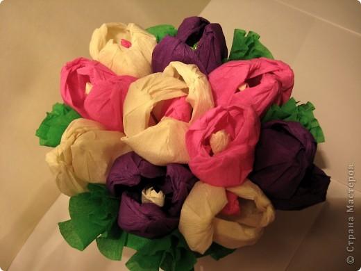 К 1 сентября вырастили вот такие сладкие крокусы для своей учительницы. фото 3