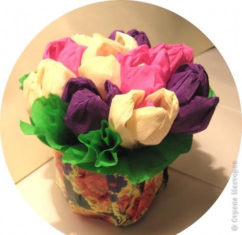 К 1 сентября вырастили вот такие сладкие крокусы для своей учительницы. фото 4