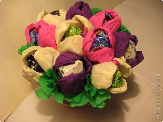 К 1 сентября вырастили вот такие сладкие крокусы для своей учительницы. фото 2