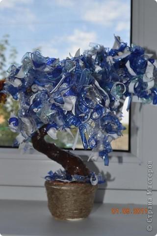 Мои первые деревья из пластиковых бутылок.  Ваяла на даче благо бутылок валялось вокруг полно. Каждое дерево состоит из 4 цветов бутылок.  фото 2