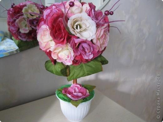 розовое деревце фото 1