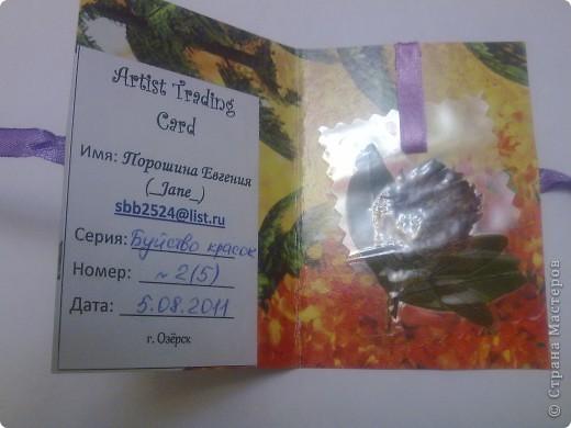"""Олисандра пригласила поучавствовать в игре - сюрпризный АТС http://stranamasterov.ru/node/2116701) Наша команда: Ксюша - токалка ( главная в этой """"пятерке"""" , т.е. куратор) 2) Jane 3) bibka 4) ШМыГа 5) Степанова Тема нашей сюрпризной карточки  """"Буйство красок"""" Постепенно, одна за другой,  АТСки добрались до своих хозяек. Мне пришли мои очаровашки! фото 6"""