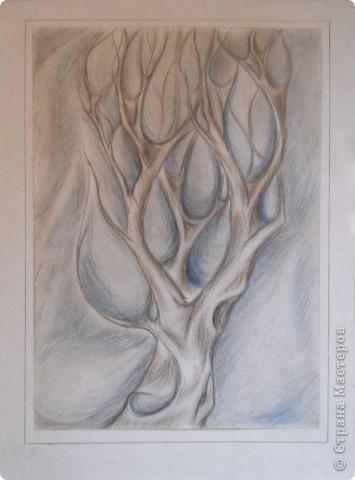 Немного графики деревьев фото 1