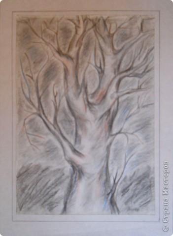 Немного графики деревьев фото 2