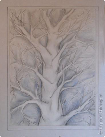 Немного графики деревьев фото 4