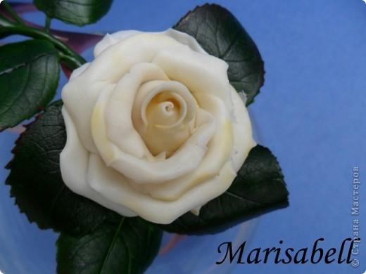 """Веточка розы цвета """"слоновая кость"""" с бутончиком и листьями. фото 4"""