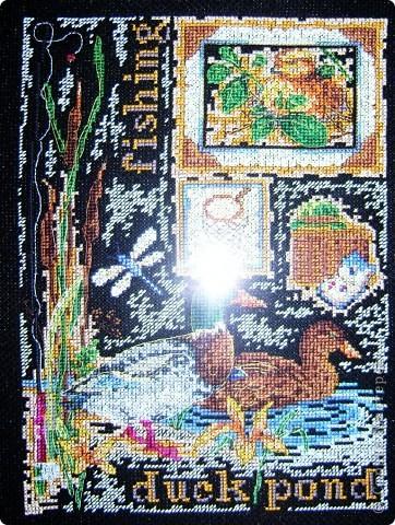 Утки и синицы фото 3