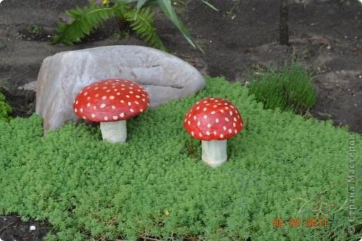 Вот такие грибы у меня получились. Шляпка это миска а ножка бутылка. фото 12