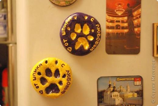 Вот такой магнитик теперь висит у меня на холодильнике! Это от моих домашних зверюшек, кота и пса.  фото 4
