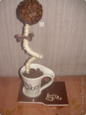 мое первое кофейное деревце. Не судите строго. Но если будут какие-то дополнения буду только рада. фото 1