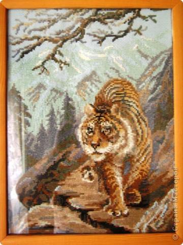 Тигры (наборы) фото 3