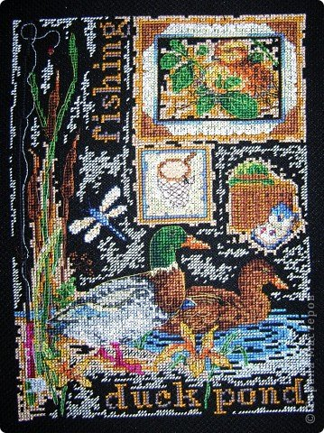 Утки и синицы фото 1
