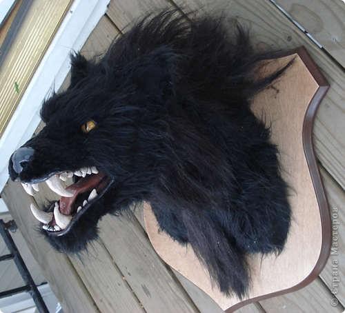 Чтобы <a href=http://vanessalee.ru/?p=1642>джекалопу на стене</a> не было скучно, предлагаю вам еще один трофей из небывалого чудовища. При его изготовлении ни один вервольф не постарадал! фото 1
