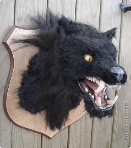 Чтобы <a href=http://vanessalee.ru/?p=1642>джекалопу на стене</a> не было скучно, предлагаю вам еще один трофей из небывалого чудовища. При его изготовлении ни один вервольф не постарадал! фото 2