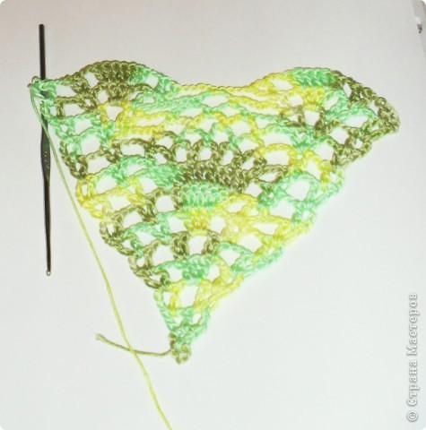 Прошерстив интернет,нашла вот такой симпатичный на мой взгляд бактус: http://crochetclub.net/blog/2011/01/11/baktus-svyazannyj-kryuchkom/ фото 4