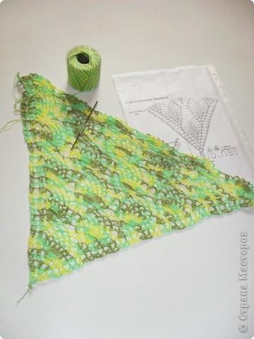 Прошерстив интернет,нашла вот такой симпатичный на мой взгляд бактус: http://crochetclub.net/blog/2011/01/11/baktus-svyazannyj-kryuchkom/ фото 5