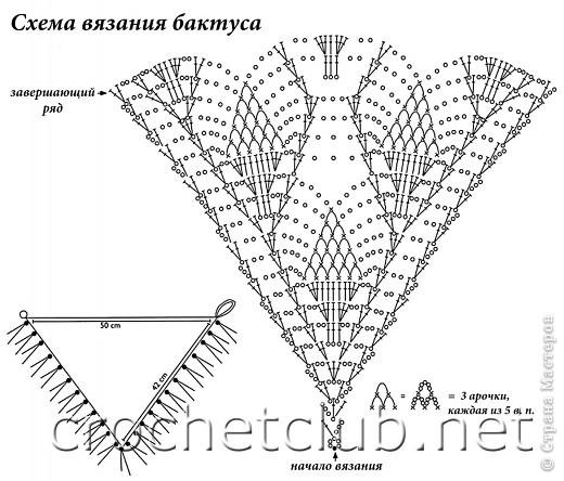 Прошерстив интернет,нашла вот такой симпатичный на мой взгляд бактус: http://crochetclub.net/blog/2011/01/11/baktus-svyazannyj-kryuchkom/ фото 2