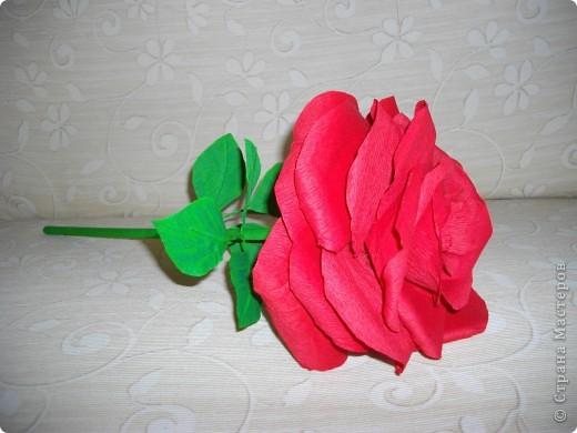 """Сделала розу для племянника. Должен был играть роль """"маленького принца"""". фото 1"""