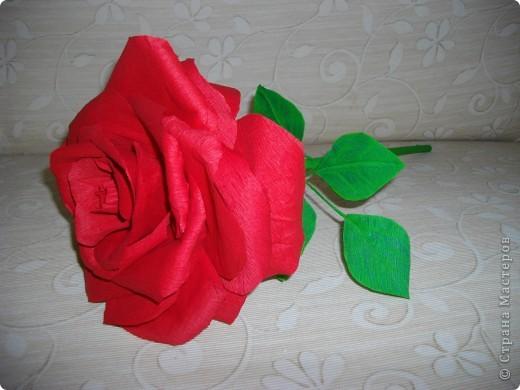"""Сделала розу для племянника. Должен был играть роль """"маленького принца"""". фото 4"""