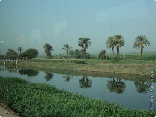 """Сразу оговорюсь, я не знала историю Египта до поездки туда. Все, что я буду описывать рассказали нам гиды (с них весь спрос).  Лето 2010 года. Вылет из Домодедова. Очень не хотелось, чтобы погода нас """"подставляла"""". Приехав в аэропор мы узнали, что многие рейсы перенесли и даже отменили, мы было уже собирались поехать назад домой, но свершилось чудо... В такую погоду, вылет произошел по расписанию. Сидя в самолете, мы уже ощущали себя счастливыми туристами, одной ногой, которые в Египте. фото 12"""
