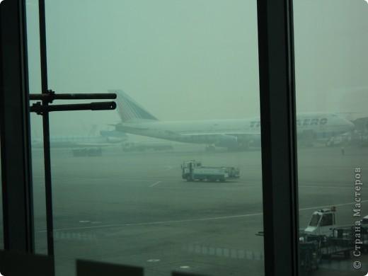 """Сразу оговорюсь, я не знала историю Египта до поездки туда. Все, что я буду описывать рассказали нам гиды (с них весь спрос).  Лето 2010 года. Вылет из Домодедова. Очень не хотелось, чтобы погода нас """"подставляла"""". Приехав в аэропор мы узнали, что многие рейсы перенесли и даже отменили, мы было уже собирались поехать назад домой, но свершилось чудо... В такую погоду, вылет произошел по расписанию. Сидя в самолете, мы уже ощущали себя счастливыми туристами, одной ногой, которые в Египте. фото 1"""