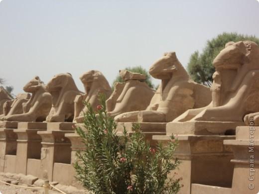 """Сразу оговорюсь, я не знала историю Египта до поездки туда. Все, что я буду описывать рассказали нам гиды (с них весь спрос).  Лето 2010 года. Вылет из Домодедова. Очень не хотелось, чтобы погода нас """"подставляла"""". Приехав в аэропор мы узнали, что многие рейсы перенесли и даже отменили, мы было уже собирались поехать назад домой, но свершилось чудо... В такую погоду, вылет произошел по расписанию. Сидя в самолете, мы уже ощущали себя счастливыми туристами, одной ногой, которые в Египте. фото 18"""
