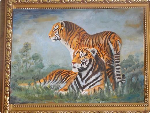 Бесшумной поступью  Таёжный тигр шагал, Себе он пищу на обед искал, Его ласкали солнышка лучи, Движенья зверя величавы, хороши. Обманчив тигра дорогой наряд, Непосвященный он ласкает взгляд, Шикарный мех и грустные глаза, Но вырваться из лап его нельзя. Он ищет жертву, ту, что послабей, Чтоб не сбежала из его когтей. С добычей станет он слегка играть, От страха жертвы радость получать. Своим бесценным мехом дарит он тепло, От предвкушенья смерти сердце замерло. Он вроде бы играет, но готов убить. Повадки тигра невозможно изменить.  Вот так и в жизни: гибнет, кто слабей, Кто не способен избежать чужих когтей. Старайтесь, люди, лапы тигра избегать, По жизни на одном дыхании бежать.