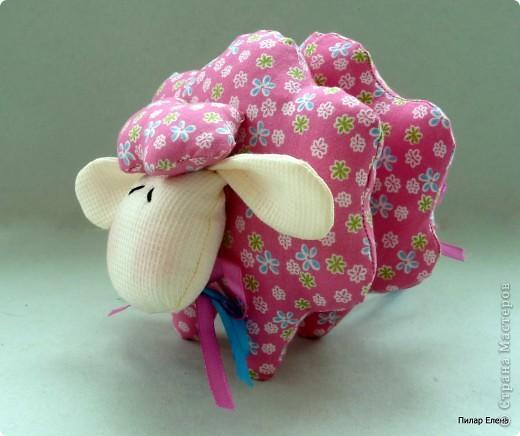Ах, ты, бедная овечка... фото 3