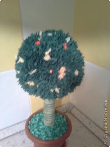 Топиарий- мандариновое дерево! фото 2