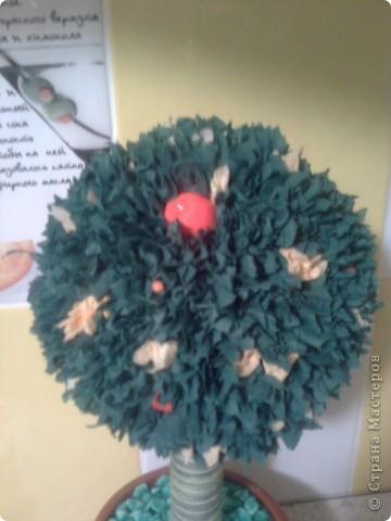 Топиарий- мандариновое дерево! фото 3