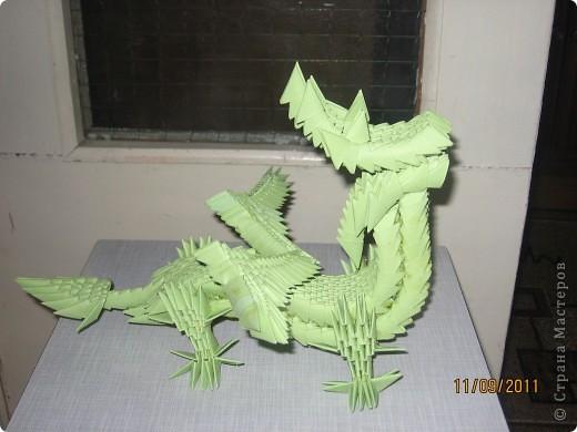 Драконы фото 1
