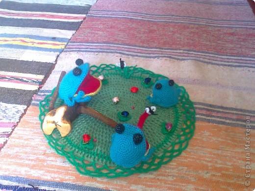 лягушки на болоте фото 2
