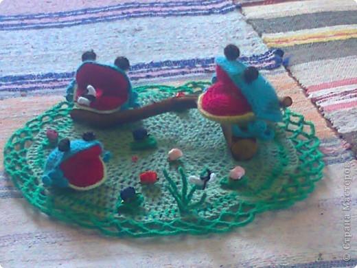 лягушки на болоте фото 1