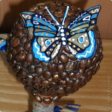Вашему вниманию кофейное дерево! фото 7