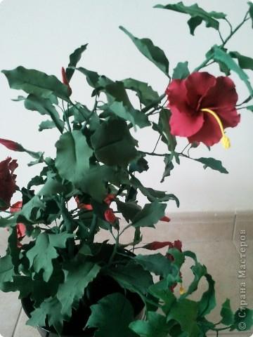 """Всем доброго дня. Пока я подбирала цвета к моим заказным """"Огненным букетикам"""", у меня слепилось такое деревце. фото 2"""