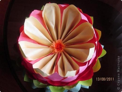 Вот такая лилия распустилась у нас на журнальном столике фото 3