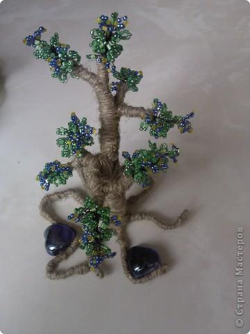 и снова деревце фото 1