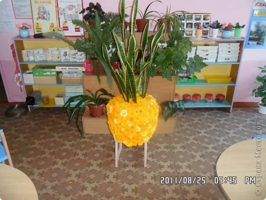 улитка из цветов на паролоне фото 2