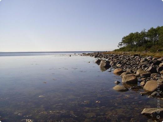 Месяц назад моя дочь ездила на Соловецкие острова к Белому морю. Соловецкий моностырь, и всё, что с ним связано - это очень интересно, но я хочу поделиться с вами тем, что поразило меня больше всего - красота северной природы. Мне, как жителю средней полосы, просто покоя не давали эти пейзажи, когда я их увидела на фото......Посмотрите вместе со мной! Итак, дочь с подругой поехали на велосипедах на южный край острова....... фото 5