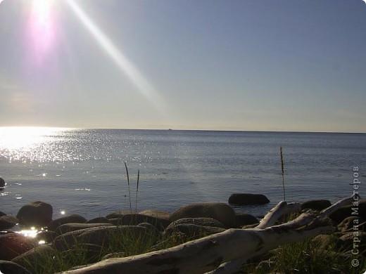 Месяц назад моя дочь ездила на Соловецкие острова к Белому морю. Соловецкий моностырь, и всё, что с ним связано - это очень интересно, но я хочу поделиться с вами тем, что поразило меня больше всего - красота северной природы. Мне, как жителю средней полосы, просто покоя не давали эти пейзажи, когда я их увидела на фото......Посмотрите вместе со мной! Итак, дочь с подругой поехали на велосипедах на южный край острова....... фото 8