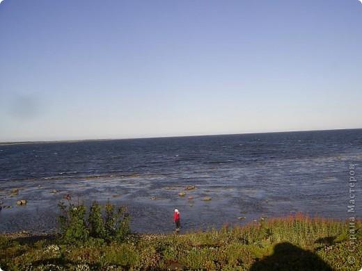 Месяц назад моя дочь ездила на Соловецкие острова к Белому морю. Соловецкий моностырь, и всё, что с ним связано - это очень интересно, но я хочу поделиться с вами тем, что поразило меня больше всего - красота северной природы. Мне, как жителю средней полосы, просто покоя не давали эти пейзажи, когда я их увидела на фото......Посмотрите вместе со мной! Итак, дочь с подругой поехали на велосипедах на южный край острова....... фото 10