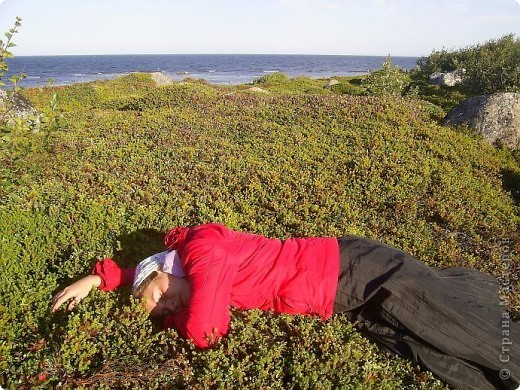 Месяц назад моя дочь ездила на Соловецкие острова к Белому морю. Соловецкий моностырь, и всё, что с ним связано - это очень интересно, но я хочу поделиться с вами тем, что поразило меня больше всего - красота северной природы. Мне, как жителю средней полосы, просто покоя не давали эти пейзажи, когда я их увидела на фото......Посмотрите вместе со мной! Итак, дочь с подругой поехали на велосипедах на южный край острова....... фото 15