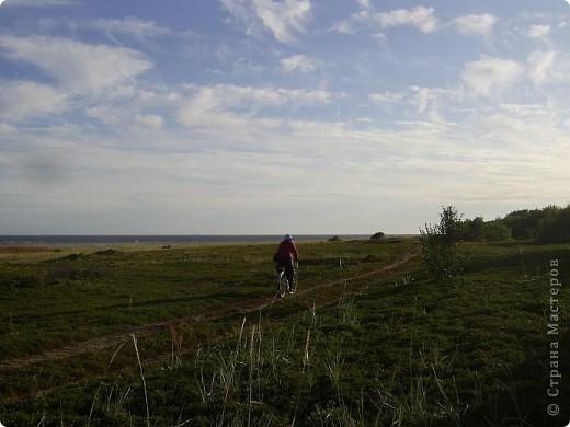 Месяц назад моя дочь ездила на Соловецкие острова к Белому морю. Соловецкий моностырь, и всё, что с ним связано - это очень интересно, но я хочу поделиться с вами тем, что поразило меня больше всего - красота северной природы. Мне, как жителю средней полосы, просто покоя не давали эти пейзажи, когда я их увидела на фото......Посмотрите вместе со мной! Итак, дочь с подругой поехали на велосипедах на южный край острова....... фото 17