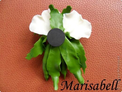 Поделка изделие Лепка Магнит на холодильник Зеленый горох Фарфор холодный фото 8