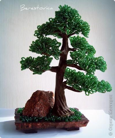 Последние деревья с камнями. Больше вроде и камней приличных не осталось, да и идей пока нет.  фото 3