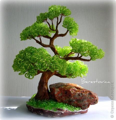 Последние деревья с камнями. Больше вроде и камней приличных не осталось, да и идей пока нет.  фото 4
