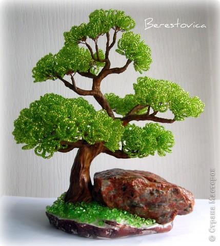 Последние деревья с камнями. Больше вроде и камней приличных не осталось, да и идей пока нет.  фото 5