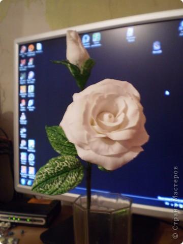 первый мой цветочек из полимерной глины